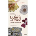 Guide des lichens de France-Lichens des roches- Michel Bertrand