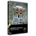 National Geographic - DVD - Instincts sauvages